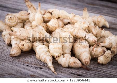 Japanese crosne Stachys affinis tubers rhizome root vegetable cl Stock photo © joannawnuk