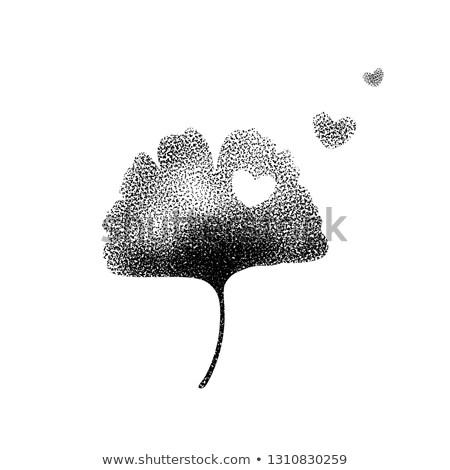 Heart with leaves of ginko biloba Stock photo © blackmoon979
