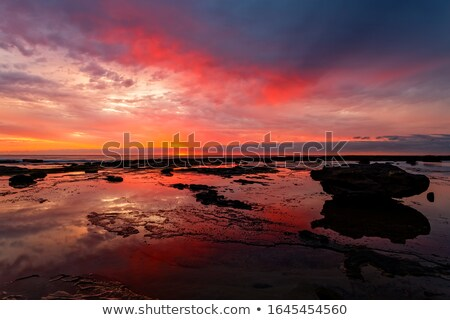 Sunrise seascape at low tide with vivid reflections Stock photo © lovleah