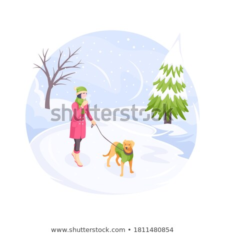 Woman Walking Dog on Leash in Winter Park Vector Stock photo © robuart
