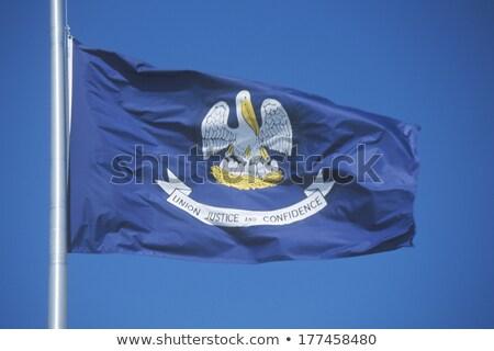 Waving Flag of the State of Louisiana Stock photo © nazlisart