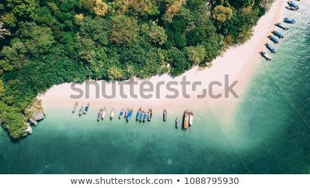 Hosszú farok csónak tengerpart Thaiföld trópusi tengerpart Stock fotó © dmitry_rukhlenko