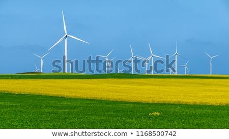Zöld mezők öko energia természet illusztráció Stock fotó © jossdiim