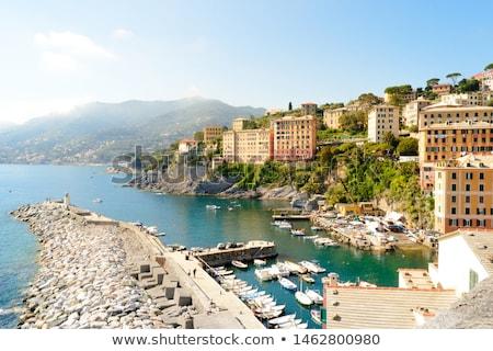little harbor in Camogli, Italy Stock photo © Antonio-S