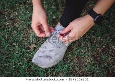 shoelace Stock photo © Hasenonkel
