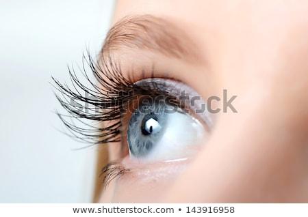 Bella occhi ragazza faccia moda Foto d'archivio © PiXXart