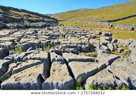Kalksteen trottoir yorkshire landschap Stockfoto © chris2766