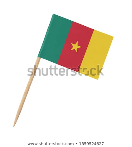 Miniatuur vlag Kameroen geïsoleerd vergadering Stockfoto © bosphorus