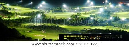 спорт · Гольф · суд · гольф · женщину · зеленый - Сток-фото © leungchopan