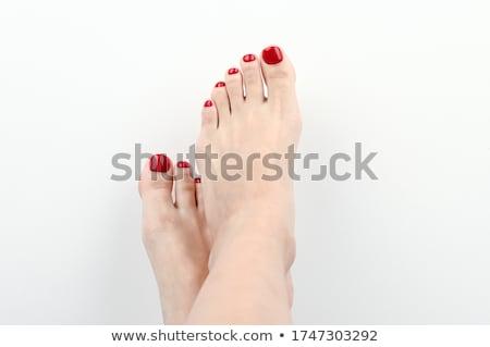 Female feet isolated on white background  stock photo © Nobilior