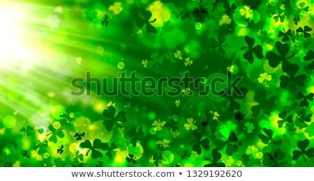 green shamrock in circles with rays Stock photo © marinini