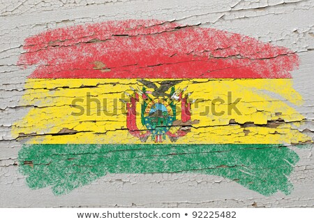 Flag Of Bolivia On Grunge Wooden Texture Painted With Chalk Foto stock © vepar5