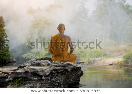 Gold buddhist monk statue Stock photo © johnnychaos