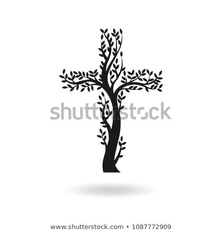 Crucifixion Cross Stock photo © eldadcarin