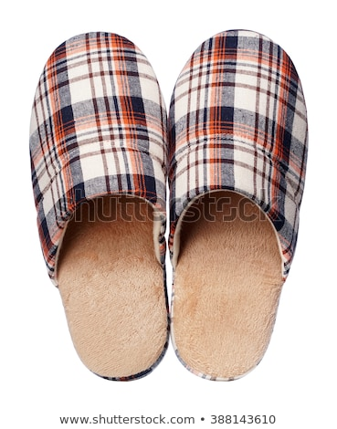 Twee slippers Stockfoto © zzve