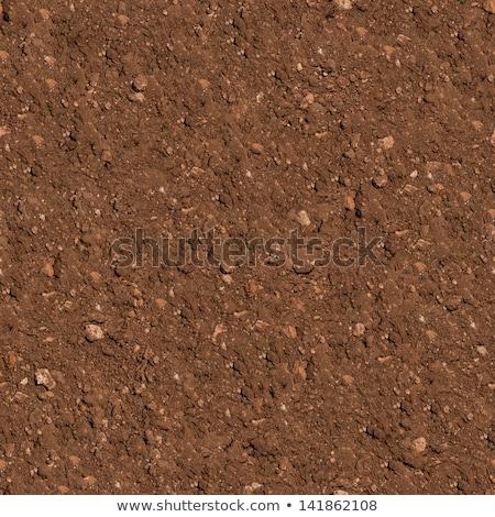 cracked brown soil seamless texture stock photo © tashatuvango