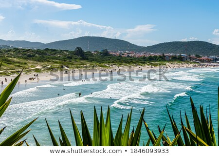 Beautiful tropical beach with bathers Stock photo © Discovod