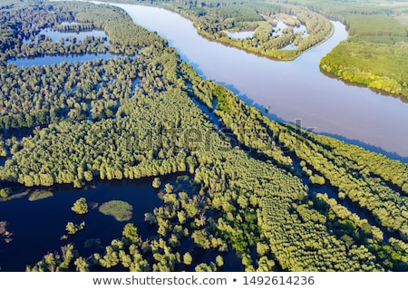 Flood of the Danube Stock photo © jakatics