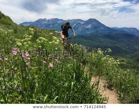 Hegyikerékpározás Colorado idős férfi egyenetlen terep Stock fotó © PixelsAway