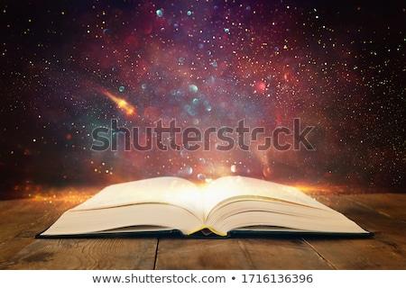 Eski kitaplar eski deri raf okuma Stok fotoğraf © angusgrafico