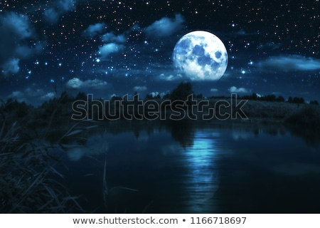 romántica · luna · llena · cielo · de · la · noche · cielo · luz · conejo - foto stock © claudiodivizia