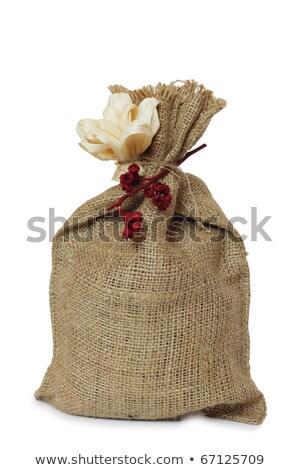 Christmas toy - money bag Stock photo © cherezoff