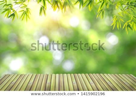 tabel · stoel · combinatie · bamboe · mooie · interieur - stockfoto © thanarat27