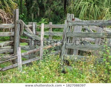 clôture · design · fond · métal · pierre · sécurité - photo stock © nejron