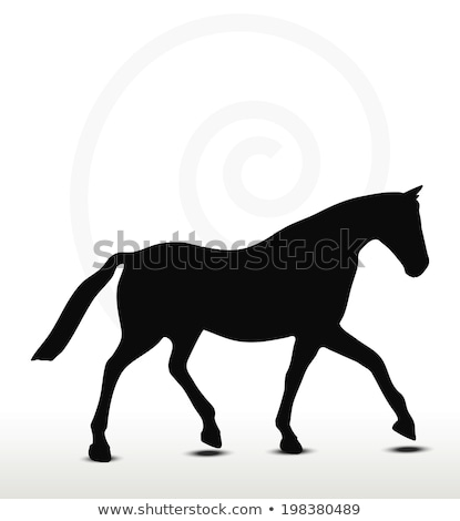 horse silhouette in parade walk position stock photo © istanbul2009