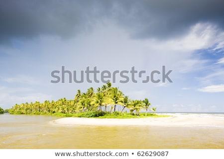 Cocos Bay, Trinidad stock photo © phbcz