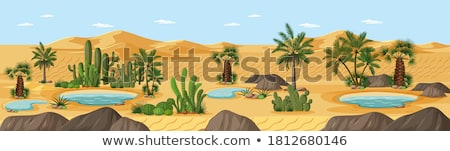 Oasis with palm trees Stock photo © Sportactive