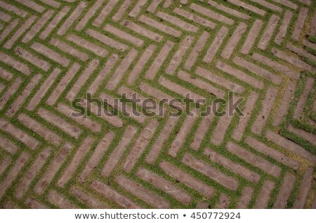 Grey Pave Slabs in the Form of Triangles and Other Geometric Shapes. Stock photo © tashatuvango