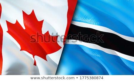 Kanada Botswana flagi puzzle odizolowany biały Zdjęcia stock © Istanbul2009