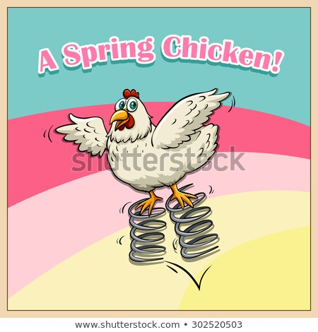 A spring chicken idiom Stock photo © bluering