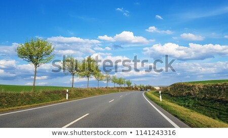 Trees along a country road Stock photo © manfredxy