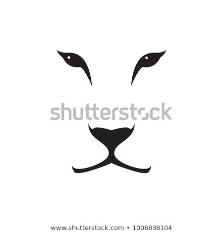 Stok fotoğraf: Aslan · karikatür · clipart · görüntü · kedi · dizayn