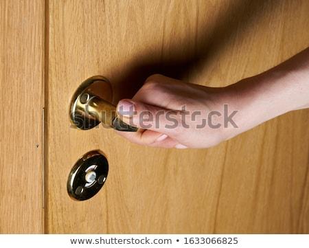 öreg · fából · készült · ajtó · fém · fogantyú · fa - stock fotó © calek