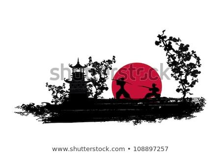 Ninja silhueta pôr do sol ilustração homem Foto stock © adrenalina