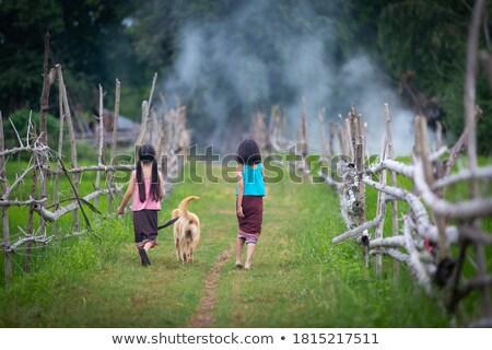 Menina verde traje ilustração crianças crianças Foto stock © bluering