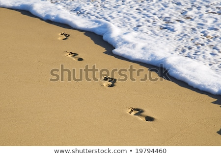 Footprints on the water's edge Stock photo © Klinker