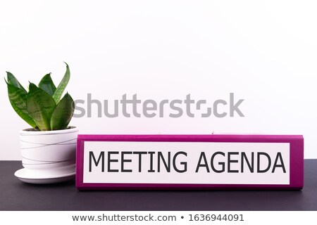 agenda on blue office folder toned image stock photo © tashatuvango