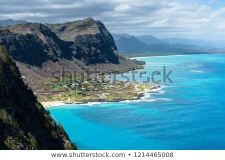 Plaj sahil manzara sahil Hawaii ABD Stok fotoğraf © dirkr