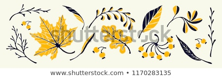 Sale Banner With Leaves Border Stock photo © barbaliss