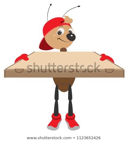 Gyors házhozszállítás pizza hangya futár kartondoboz Stock fotó © orensila