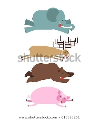 Halott állatok szett elefánt szarvas medve Stock fotó © popaukropa