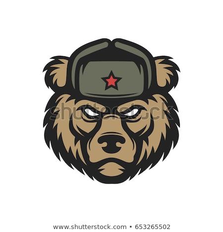 ロシア クマ ベクトル 芸術 頭 タイポグラフィ ストックフォト © morys