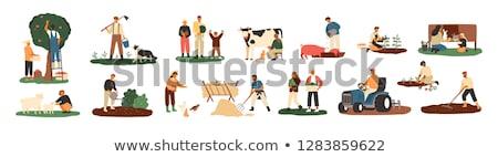 Farm and Farmer with Cow, Vector Illustration Stock photo © robuart