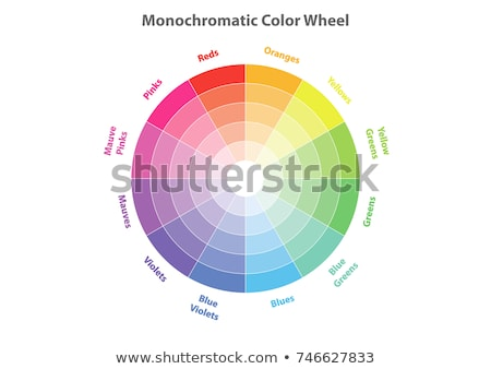 round color palette isolated on white background color schemes and spectrum vector illustration stock photo © kurkalukas