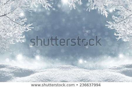 inverno · neve · transparente · queda · floco · de · neve - foto stock © romvo