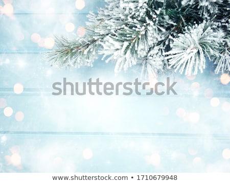 Queda de neve verde madeira natal inverno floco de neve Foto stock © romvo